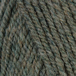 Plymouth Encore Worsted - Erin