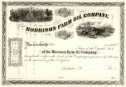 Morrison Farm Oil Stock 186_