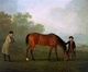 Art - Oil Paintings - Masterpiece #3018 - Sawrey Gilpin - Furiband with his Owner Sir Harry Harpur and a Groom - Museum Quality