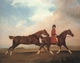 Art - Oil Paintings - Masterpiece #3034 - STUBBS, George - William Anderson with Two Saddle-horses er - Gallery Quality