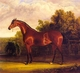 Art - Oil Paintings - Masterpiece #3044 - Herring, John F. Sr. - Negotiator the Bay Horse in a Landscape - Gallery Quality