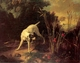 Art - Oil Paintings - Masterpiece #3047 - OUDRY, Jean-Baptiste - A Dog on a Stand - Gallery Quality