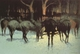 Art - Oil Paintings - Masterpiece #3080 - Frederic Remington - The Winter Campaign (mk43) - Museum Quality