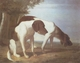 Art - Oil Paintings - Masterpiece #3095 - Jacques-Laurent Agasse - Foxhounds in a Landscape - Museum Quality