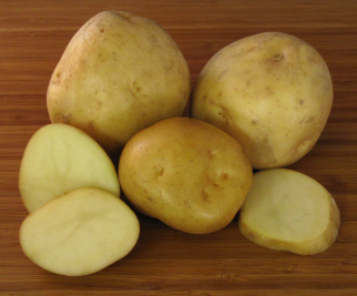 Irish Cobbler Seed Potatoes 50 lbs