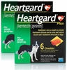 Heartgard PLUS Green 12 Months