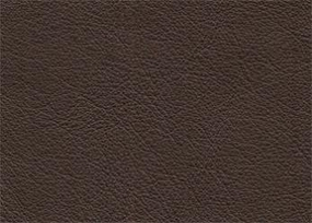 Leather - Catalina Coal