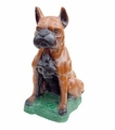 Boxer dog money box. 6 Pzs