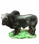 Bull money box. 6 Pzs