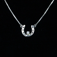 Lucky Horseshoe w/CZ Center Necklace