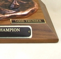Reserve National Champion Trophy Nameplate