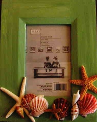 Rustic Seashell Picture frame Coastal green