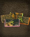 Mossy Oak Camouflage Checkbook Cover or Wallet