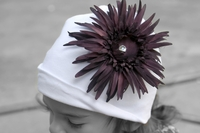 <center>Plum Daisy/White Hat</center>