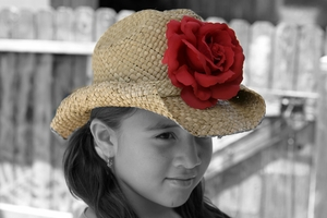 <center>Red Rose Western Hat<center/>