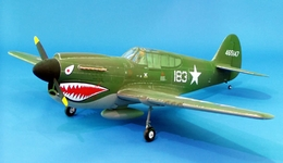 "Super Sale! CMP Model P40 Warhawk 140 - 73 "" ARF Nitro Gas Radio Remote Controlled ""Tiger Shark"" Airplane RC Plane"