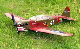 P-40 Warhawk Brushless Electric Radio Remote Control RC Airplane ARF EP Plane