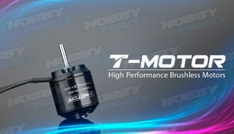 High Performance Brushless T-Motor AS2216 880KV for Airplane