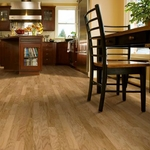 Armstrong Performance Plus Hardwood