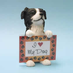 Border Collie Dog Photo Frame by Swibco