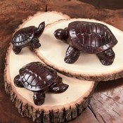 Hand Carved Turtles
