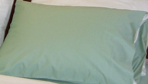 Organic Cotton 410 Thread Pillowcase