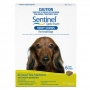 Sentinel (Green) Small Dog  (9 - 24 lbs)  - ( 4 - 11Kg ) 6 Month Pk