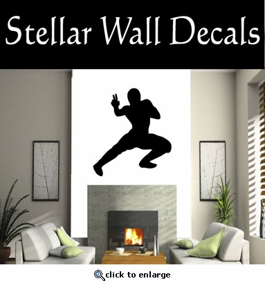 Kung Fu NS003 Vinyl Decal Wall Art Sticker Mural
