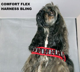 BEADED COMFORT FLEX HARNESS