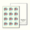 "PhotoFrost 2.5"" Circle Icing Sheet - 12 / per page"