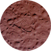 "OCEAN FISH STEPPING STONE MOLD (13.73"" DIA)"