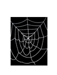 7.5' ft Economy White Giant Spider Web