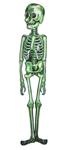 Mr. Green Skeleton Decoration