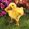 Folkmanis Puppet <br>Duckling