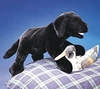 Folkmanis Puppet <br>Black Lab Puppy