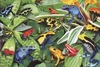 Ravensburger 300 Piece <br>Friendly Frogs
