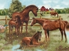 Ravensburger <br>300 Piece <br>Horse Family