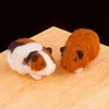 Wool Pets <br>Guinea Pigs<br>Easy