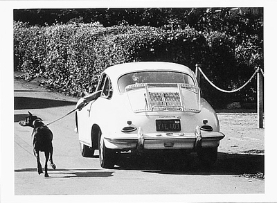 WALKING THE DOG, SAN FRANCISCO, CA, 1976