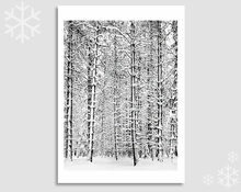 PINE FOREST IN SNOW - HOLIDAY CARDS