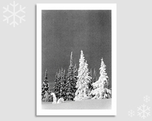 GHOST TREES, TWO TOP MOUNTAIN, MONTANA - HOLIDAY CARDS