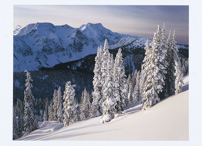 WINTER IN THE CARIBOO MOUNTAINS, BRITISH COLUMBIA - HOLIDAY CARDS