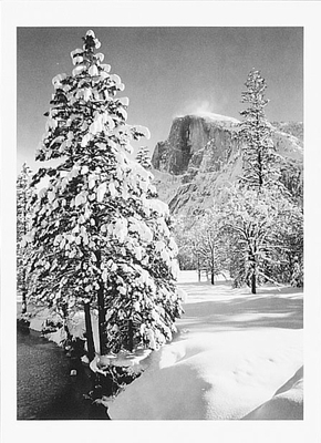 HALF DOME, TREE, WINTER, FROM STONEMAN BRIDGE, YOSEMITE NATIONAL PARK, CA, c 1940