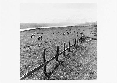 VIEW OF TOMALES BAY FROM KEHOE RANCH, POINT REYES, CA, 1977