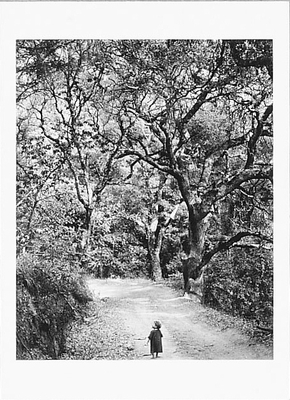 CHILD ON FOREST ROAD