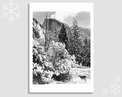 HALF DOME, TREES, DEER - HOLIDAY CARDS