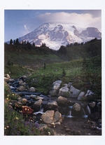 EDITH CREEK & MOUNT RAINIER, WA