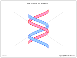 Left-handed double helix