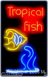 Tropical Fishy Neon Sign