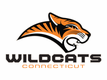 Connecticut Wildcats